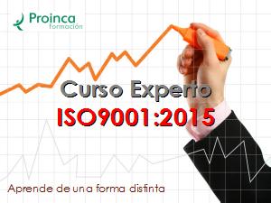 Curso Experto ISO9001