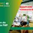 Curso Dirección de Proyectos PMP